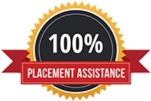 100% placement assistance in Digital Marketing Laxmi Nagar Delhi